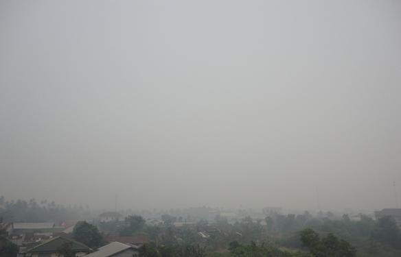 Hasil Jepretan Ditengah Kabut Asap