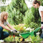 Nikmati 10 Manfaat Menakjubkan Berkebun untuk Kesehatan Fisik serta Mental Anda